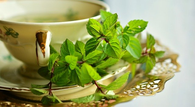Green Tea Benefits: Know the real facts behind its use